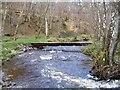 NH4939 : Footbridge over the Bruiach Burn by Craig Wallace