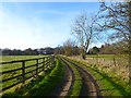SP8604 : Track and pasture, Wendover by Andrew Smith