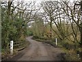 ST1208 : Irish bridge near Sheldon by Derek Harper