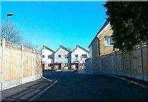 TQ3763 : Housing development, Alwyn Close by Alex McGregor