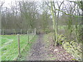 SK3599 : Footpath into Bell Ground woodland. by steven ruffles