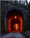 SK0957 : Swainsley Tunnel by Patrick Baldwin