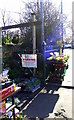 NZ3669 : Market Garden by Christine Westerback