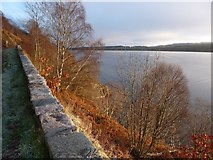 NH5735 : Looking down on Loch Ness from the A82 by Alan Reid