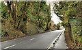 J4843 : Old railway, Downpatrick (1 of 4) by Albert Bridge