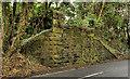 J4843 : Old railway, Downpatrick (2 of 4) by Albert Bridge