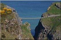 D0644 : Carrick-a-Rede Rope Bridge by Yvonne Wakefield