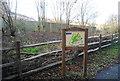 TQ5942 : Barnett's Wood Local Nature Reserve by N Chadwick