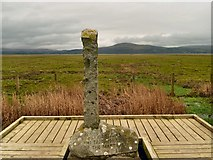 NX4355 : Covenanters' Monument by Andy Farrington