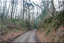TR1859 : Well Lane by N Chadwick