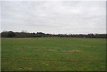 TR1859 : Farmland by Well Lane by N Chadwick