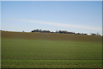 SJ8234 : Farmland near Millmeece by N Chadwick