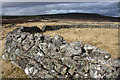 NN8297 : Old walls south of Baileguish by Dorothy Carse