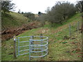 SO2485 : Metal kissing gate in a secluded valley in Shropshire by Jeremy Bolwell
