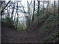 SJ2622 : Path junction above Blodwel Rock by Jeremy Bolwell