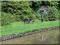 SJ6458 : Canalside picnic site near Aston juxta Mondrum, Cheshire by Roger  Kidd