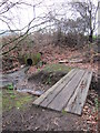 SP0285 : Footbridge Over The Chad and Ground Drain by Roy Hughes
