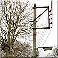 J4079 : Telegraph pole, Holywood by Albert Bridge