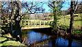 SO2924 : Footbridge over the Honddu by Jonathan Billinger