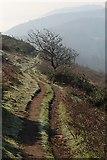 SO7641 : Path on Pinnacle Hill by Bob Embleton