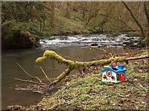 SK1273 : Plastic toy house in Cheedale by Neil Theasby