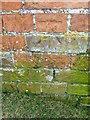 SU2124 : Bench Mark, The Pepperbox by Maigheach-gheal