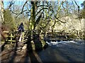 SK1258 : Footbridge in Beresford Dale by Graham Hogg