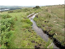 SX6870 : The Leat Known as Holne Town Gutter by Tony Atkin