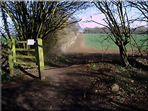 SU1789 : Public footpath, Kingsdown Lane by Vieve Forward