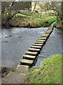 NZ7607 : Stepping stones, Lealholm by Mike Kirby