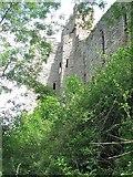 SO5074 : Ludlow Castle by Richard Webb