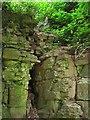 SO5074 : Limestone crag beneath Ludlow Castle by Richard Webb