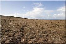 NR3977 : Blanket Bog east of Bolsa, Islay by Becky Williamson