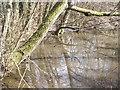 SU7532 : Pond Below Lane Hanger by Colin Smith