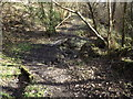 SU7532 : Two Bridges by Colin Smith