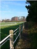 SJ4065 : Footpath beside the Roodee Racecourse by Eirian Evans