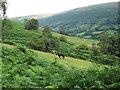 SO2728 : Vale of Ewyas by Hugh Venables