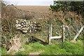 SW6032 : Footbridge over watery ditch by Elizabeth Scott