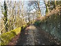 SJ9594 : Cobbled path to Osborne Road by Gerald England