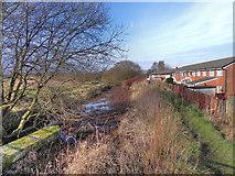 SD7908 : Bealey's Goit, behind Ripon Close by David Dixon
