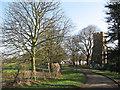 TL3655 : Toft: Church Road by John Sutton