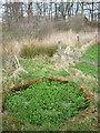NY6222 : Spring, Keld Brow by Karl and Ali