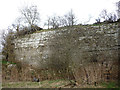 NY6021 : The main wall, disused limestone quarry, Byesteads by Karl and Ali