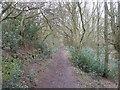 SE1326 : Footpath in Rookes Wood by John Slater