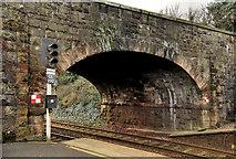 J3582 : Bridge, Whiteabbey station by Albert Bridge
