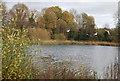TQ2436 : Ifield Mill Pond by N Chadwick