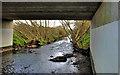 J4372 : The Enler River, Dundonald (3) by Albert Bridge