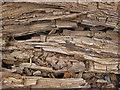 SE7169 : Decaying wood, Castle Howard Estate by Pauline E