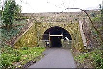 SY6778 : Tunnel Under Wyke Road by Mike Smith