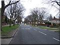 SJ3985 : Aigburth Hall Avenue by JThomas